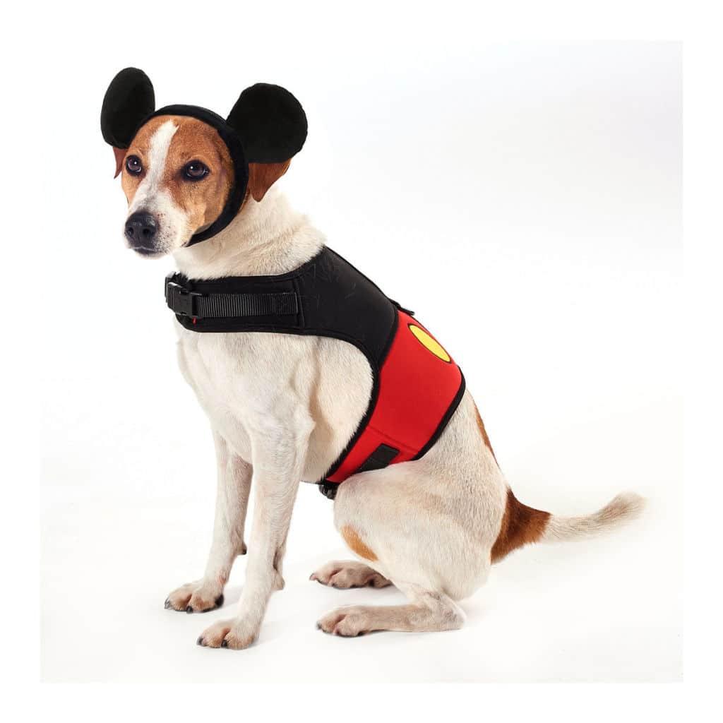 Oreilles de Mickey pour animaux