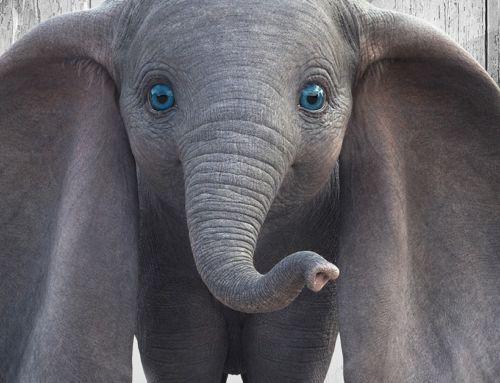 Critique de Dumbo, ou le retour de Tim Burton